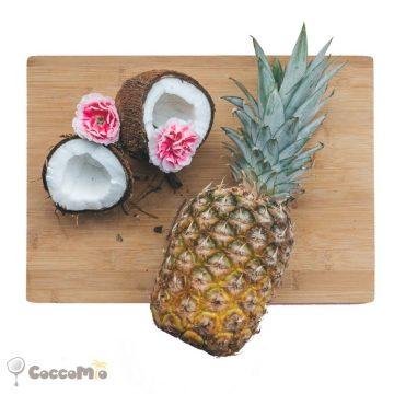 CoccoMio Raw Coconut Pineapple Cracker Recipe Square